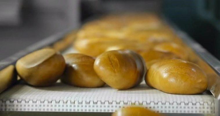 Ung dung gluten trong banh mi
