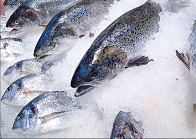 các phương pháp bảo quản thực phẩm, phương pháp đông lạnh