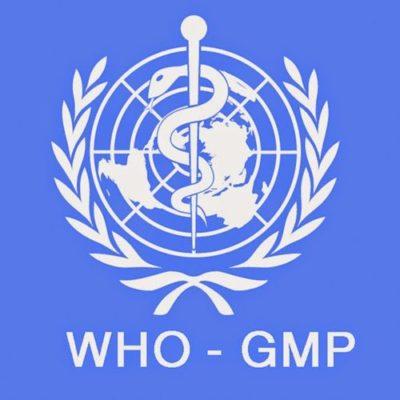Tiêu chuẩn gmp-who
