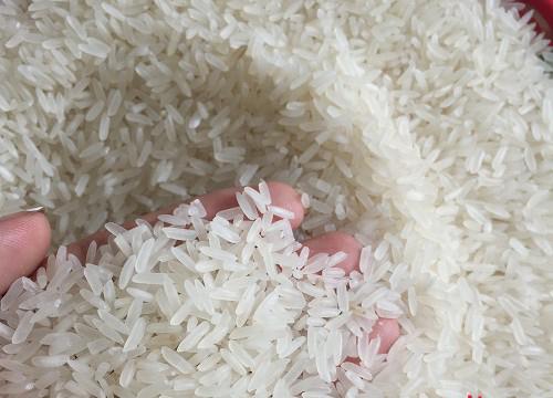 Kết quả hình ảnh cho chọn gạo