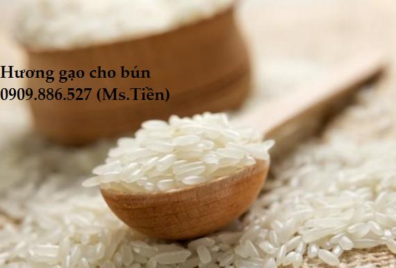 hương gạo