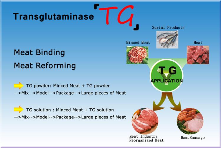 Phụ Gia Thực Phẩm Tốt Nhất Tg Enzyme,Transglutaminase