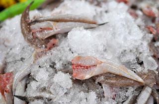 bột tạo dai giòn chả cá