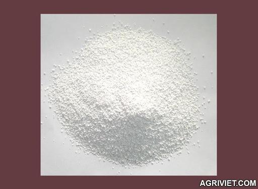 Bán DCP (Dicalcium Phosphate) dạng bột và dạng hạt