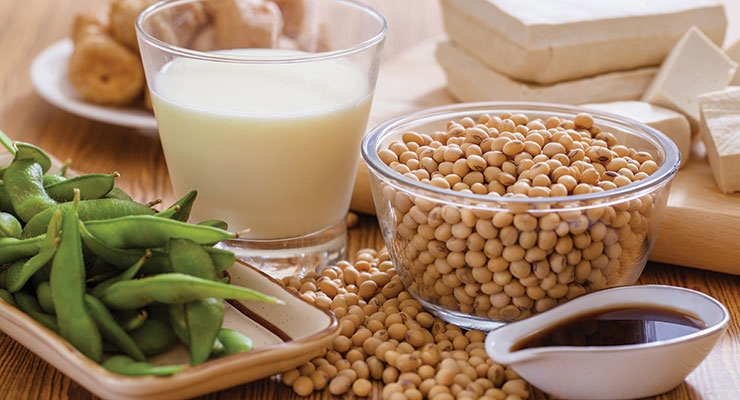 The Landscape Of Soy Protein In Food Product Formulation - Nutraceuticals World