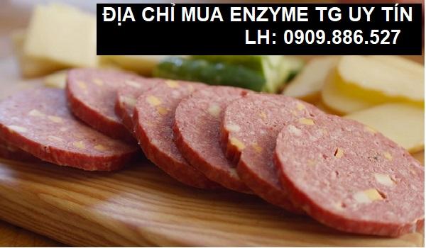 địa chỉ cung cấp enzyme tg