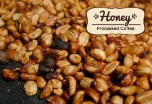 Chế biến cafe honey