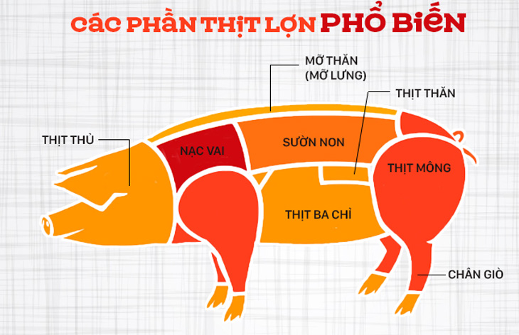 Loại thịt là một trong những yếu tố quan trọng quyết định cấu trúc thành phẩm giò chả